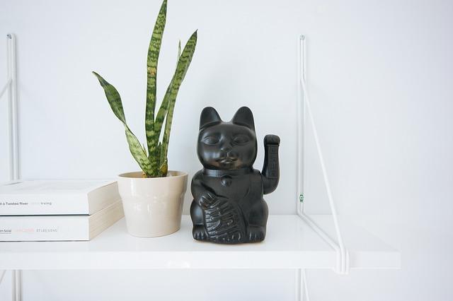 Dekoration in Schwarz und eine Zimmerpflanze