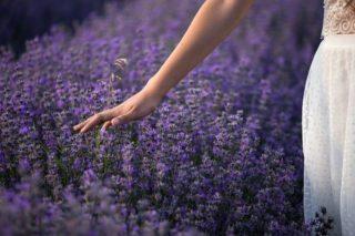 Eine Dame im Lavendelfeld